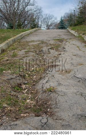 Bad asphalt road in the park in a winter day. Through the broken asphalt the grass grows
