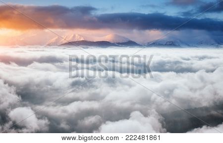 Perfect morning moment in alpine foggy valley. Frosty day in sun light. Location Carpathian national park, Ukraine, Europe. Scenic image of wilderness, holiday concept. Explore the beauty of earth.