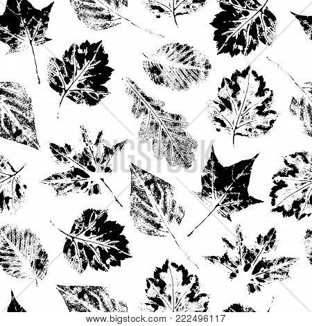 Black and white seamless pattern of falling maple, oak, birch and aspen leaves, hand made ink print, stamp, vector illustration. Hand printed grunge seamless pattern of black and white maple leaves