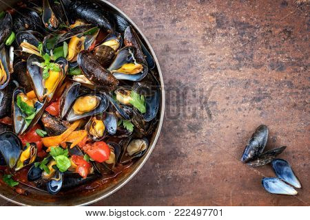 Traditional barbecue Italian blue mussel in red wine sauce as top view in a casserole with copy space right