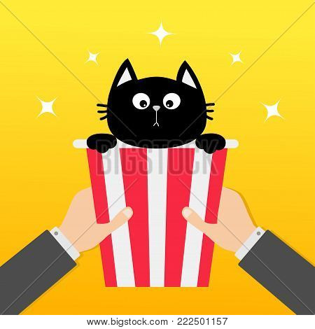 Two human businessman hands holding popcorn box with black cat. Movie Cinema icon in flat design style. Pop corn. Yellow gradient background. Shining stars. Vector illustration