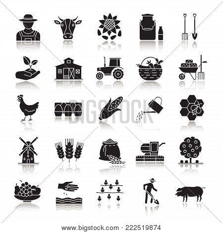 Agriculture drop shadow black glyph icons set. Farming. Agricultural implement. Isolated vector illustrations
