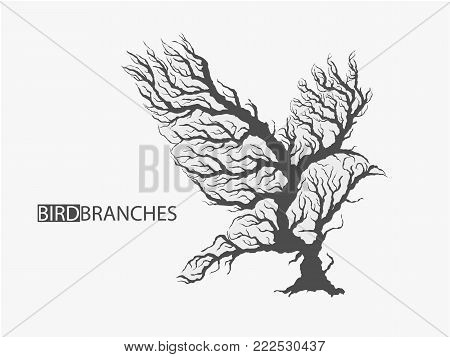 silhouette of bird from branches of tree isolated
