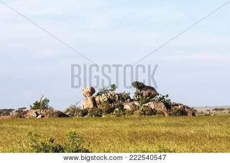 Stones and rocks on endless plain of Serengeti. Tanzania, Africa