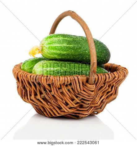 fresh small cucumbers in a wicker basket, on a white background