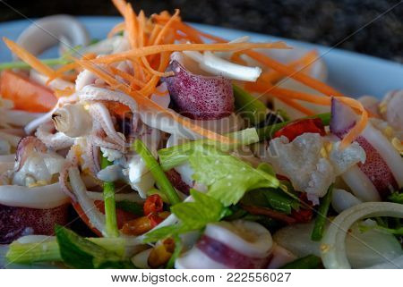 Close up picture of Thai spicy food, Yam Roum Mid Talay. The spicy squid salad.