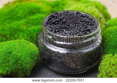 Black Caviar In A Glass Jar On White Moss Background. Black Caviar In A Silver Bowl With A Lemon And