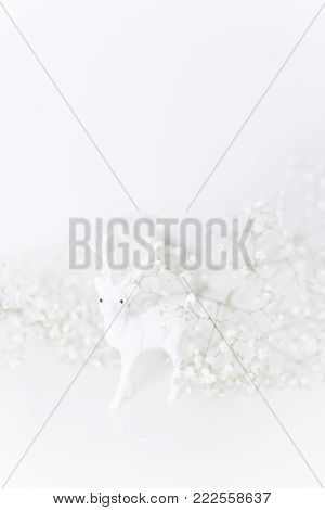 White fawn with flowers baby's breath on white bacground. Soft focus, small depth