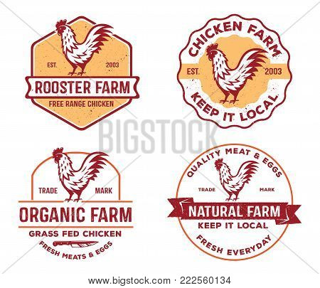 vector of vintage badge, label logo of poultry, farm, chicken product, meat and eggs organic natural farm