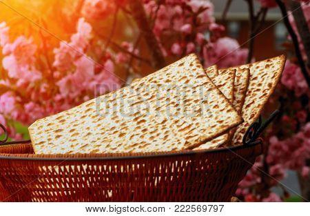 passover jewish matzoh bread holiday matzoth celebration matzoh jewish passover bread