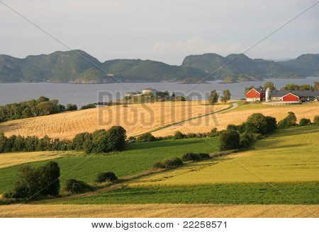 Norwegian farmland