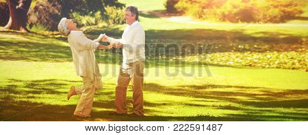 Mature couple dancing in the park during the summer