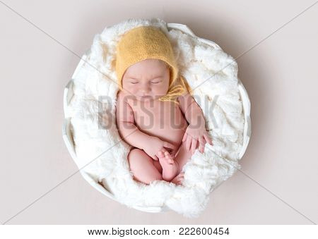 Little baby sleeping in egg