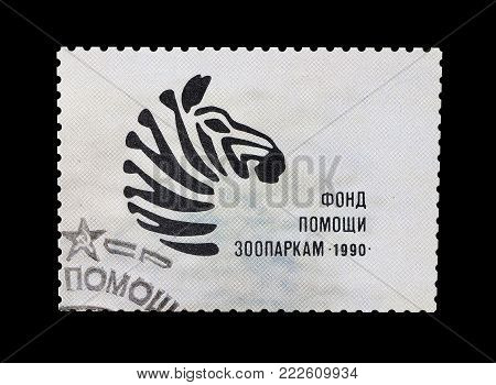 SOVIET UNION - CIRCA 1990 : Cancelled postage stamp printed by Soviet Union, that shows Zebra