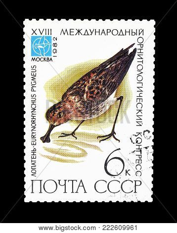 SOVIET UNION - CIRCA 1982 : Cancelled postage stamp printed by Soviet Union, that shows Spoon billed Sandpiper.
