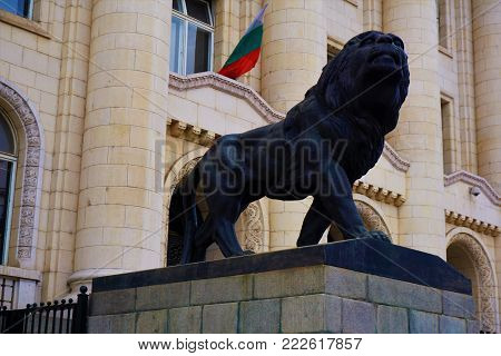 Lion in front of the palace of justice in Sofia, Bulgaria