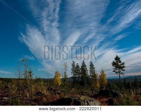 Colorful mountain inin Swedish lapland in autumn