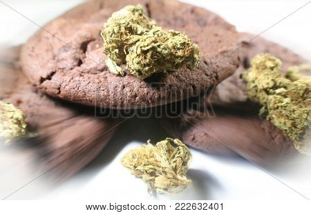 Chocolate Marijuana Cookies Zoom Burst High Quality Stock Photo