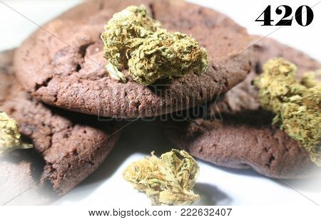 Marijuana Cookies With Bud With White Frame High Quality Stock Photo