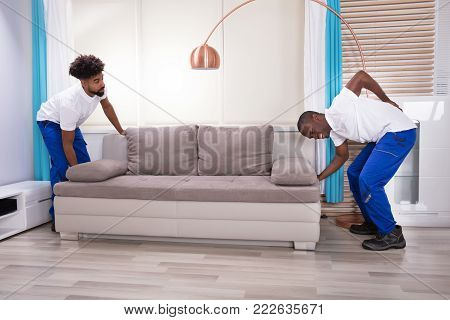 Young Male Movers With Backache Lifting Couch In The Living Room
