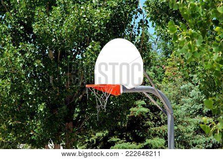 Basketball backboard goal displayed in nature outdoors.