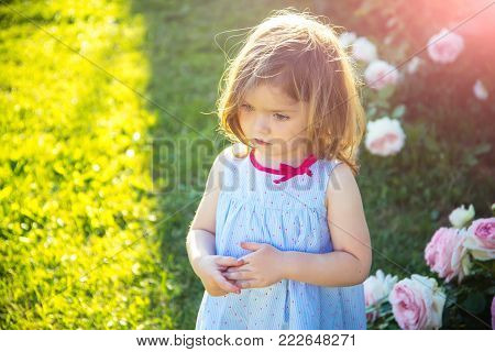 Child with thinking face in blue dress at blossoming roses. Girl standing on green grass on sunny day. Summer vacation concept. Innocence, purity and youth. Future and flourishing.