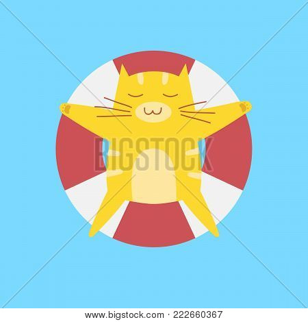 cute cat sleep on inflatable swim ring in the swimming pool.summer time design background