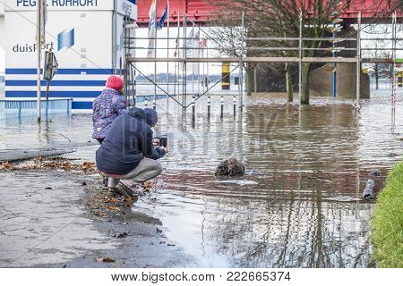 DUISBURG , GERMANY - JANUARY 08 2017 : Man and daughter observing the the river Rhine flooding the promenade in Duisburg-Ruhrort