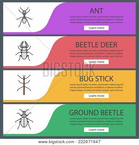 Insects web banner templates set. Ant, stag bug, phasmid, ground beetle. Website color menu items. Vector headers design concepts