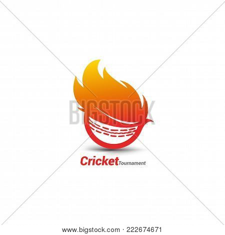 flaming cricket ball vector for cricket tornament and cricket championship