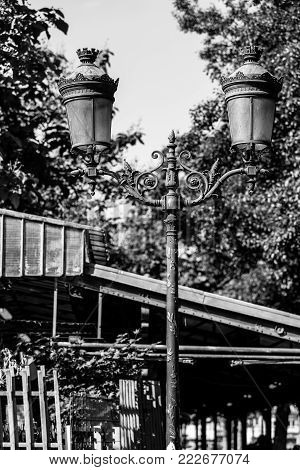 Traditional vintage street lantern (lamppost) on the Cite Island (Ile de la Cite) in summer in black and white. Paris, France