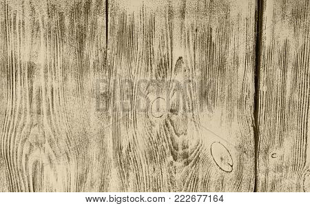 Wood Surface background. Gray background of old boards