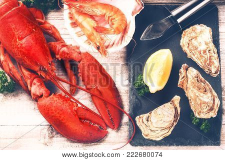 Steamed lobster, oysters and shrimps as fine selection of crustacean for dinner