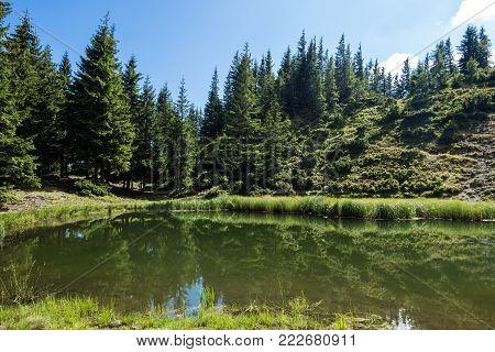 Forest Lake Ravens Eye (Ukraine, Carpathians, Dragobrat)