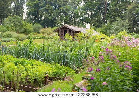 A vegetable garden with a greenhouse in the estate of Count Leo Tolstoy in Yasnaya Polyana in September 2017.