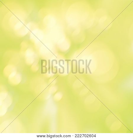 Clean green yellow spring background with soft blurred bokeh lights