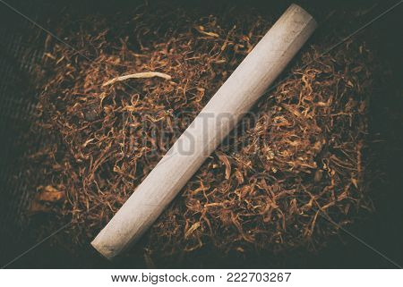 A rolled cigarette against the backdrop of tobacco.