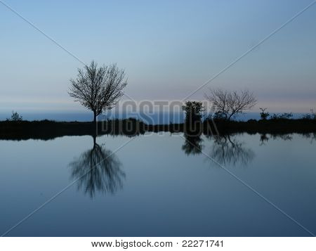 Decline on lake reflection of trees in water