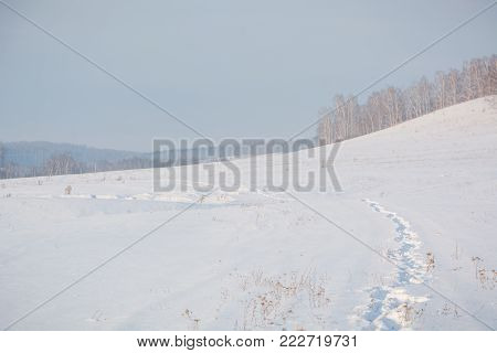 The Road On Snow. Snow Road. The Road Across The Field In Snow.