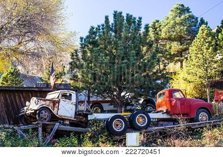 Two vintage Trucks On Ramps In Salvage Yard