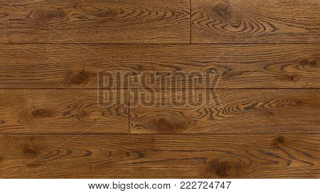 Wood texture background for design, oak toned brown board .
