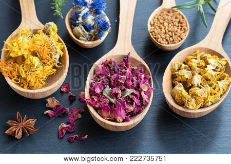 Herbs on wooden spoons on a dark background. Dried calendula, cornflower, rose petals, fenugreek seeds, mullein, star anise, fresh rosemary and thyme.