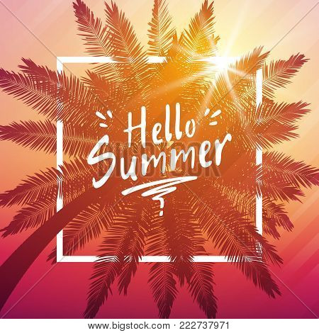 Hello summer background with palm and frame. Vector illustration Eps 10