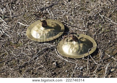 Golden ancient cymbals on the ground. Concave hemispherical discs used on pagan rituals