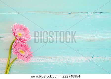 Pink flowers on vintage wooden in blue paint background, vintage pastel color tone - concept flower of spring or summer background