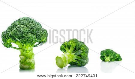 Set of green broccoli (Brassica oleracea). Vegetables natural source of betacarotene, vitamin c, vitamin k, fiber food, folate. Fresh broccoli cabbage isolated on white background.