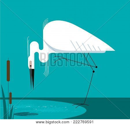 Little Egret stands on one leg on the shore of the lake, minimalist image