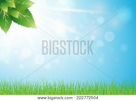 fresh green leaves background. Nature background. Spring. Heaven and gentle foliage in the sun rays. Grass in the rays of light. Vector illustration. Eps 10.