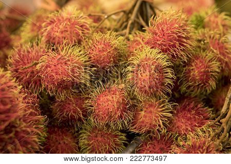 Rambutan, Tropical fruit in Southeast Asia selling in the local market.