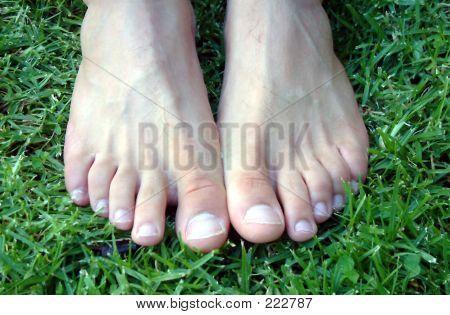 Mans Attractive Feet